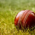 Fantasy Cricket Facts You Need to Know